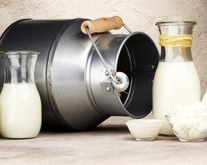 Lacteos orgánicos de vaca y cabra